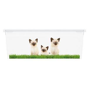 KIS Puppy and Kitten 57493 Plastový box - XS