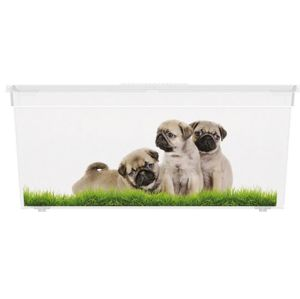 KIS Puppy and Kitten 57497 Plastový box - L